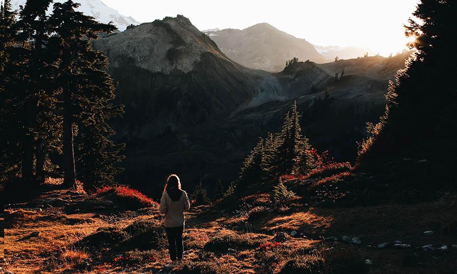 Herbst: Der Wald und die frische Luft bergen ungeahnte Superkräfte!