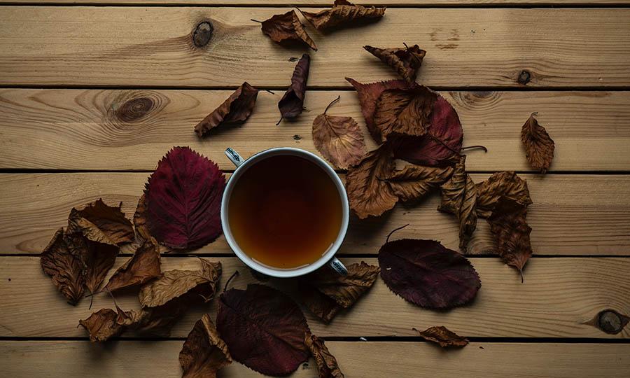 Herbst: Eine gesunde Ernährung ist im Herbst besonders wichtig.